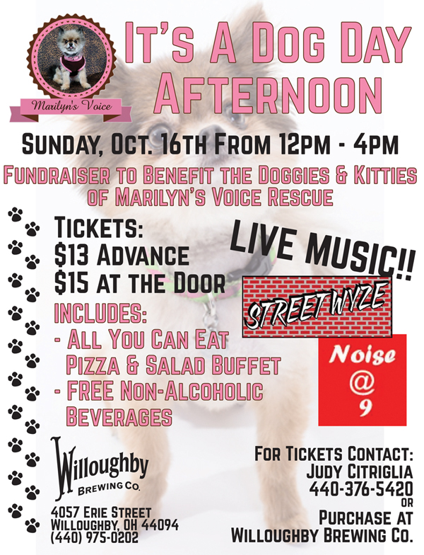 Willoughby Brewing Co Fundraiser