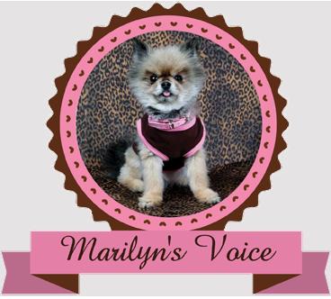 Marilyn's Voice