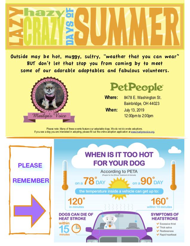 MV Event Flyer 7.13.19 Pet People Bainbridge copy